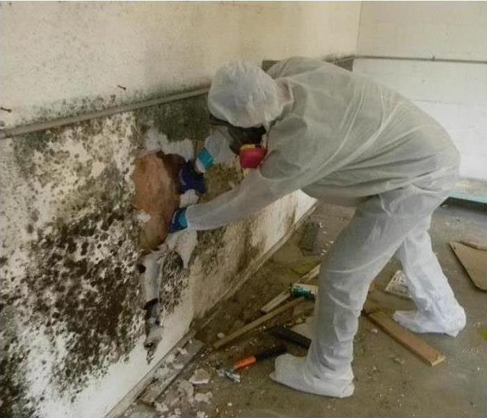 A Servpro professional working on mold removal in his personal protective equipment suit.