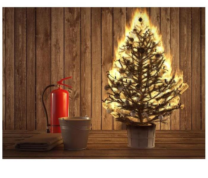 A Christmas tree and fire extinguisher